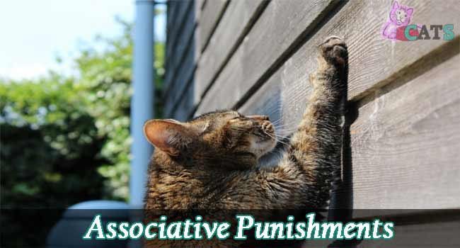 Associative Punishments