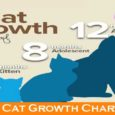 Cat Growth Chart