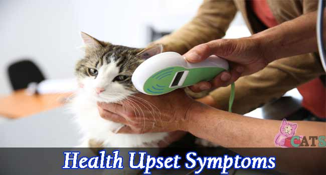 Health Upset Symptoms