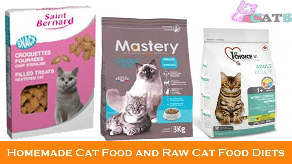 Homemade cat food and raw cat food diets recipes benefits and more forumfinder Images