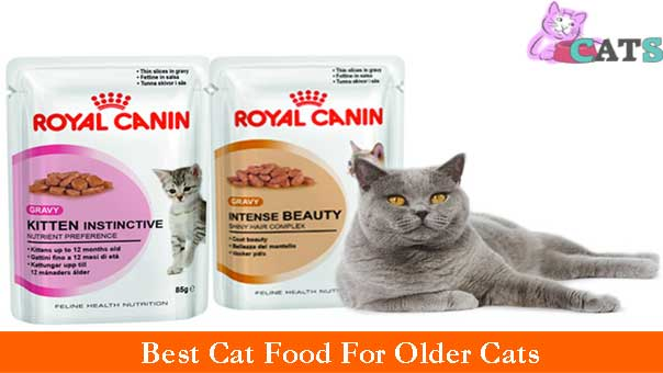 Best Cat Food For Aging Cats