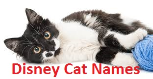 Disney cat names